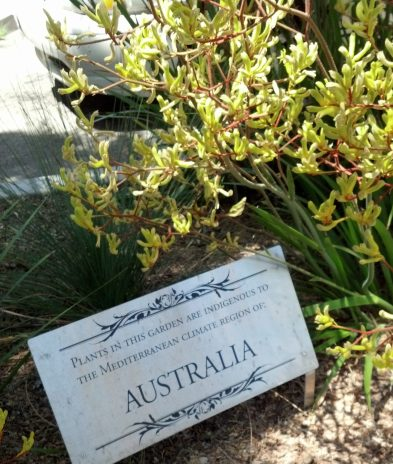FormLA2012_LCVB_Australia